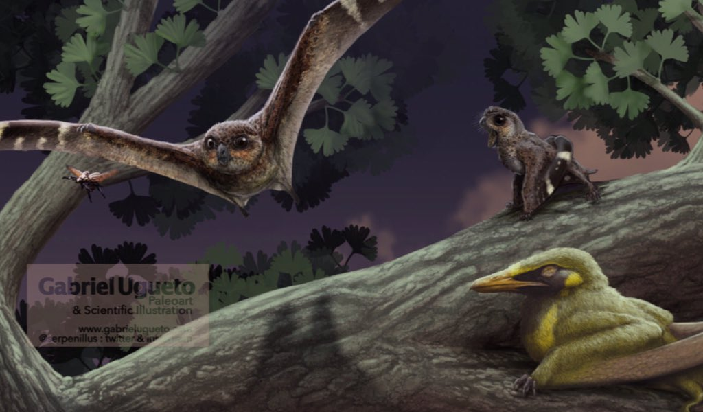 Batrachognathus pterosaurs hunting up some grub.