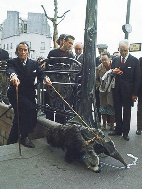 Dali and anteater