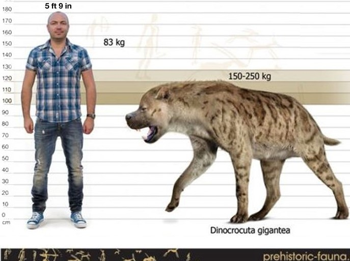 The Ten Largest Prehistoric Flesh Ingesting Land Mammals