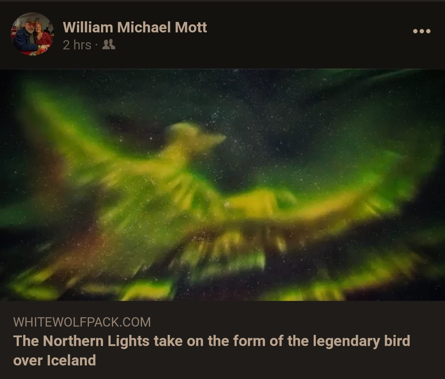 bird of light