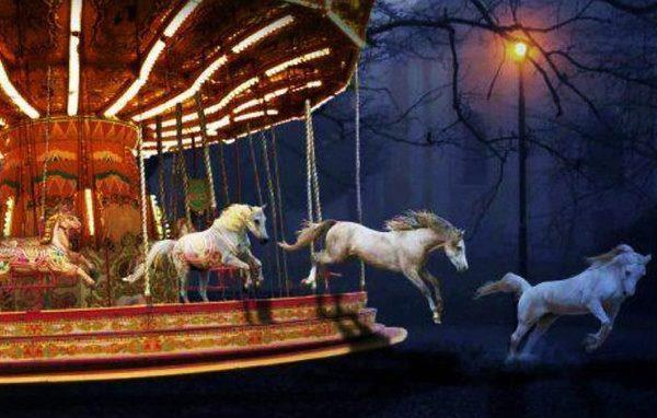 Freedom - The Carousel by Anne Wipf